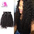 Grade 8A Brazilian Deep Wave Rosa Hair Products Brazilian Kinky Curly Virgin Hair Mink Brazilian Hair Bundles Human Hair Weave