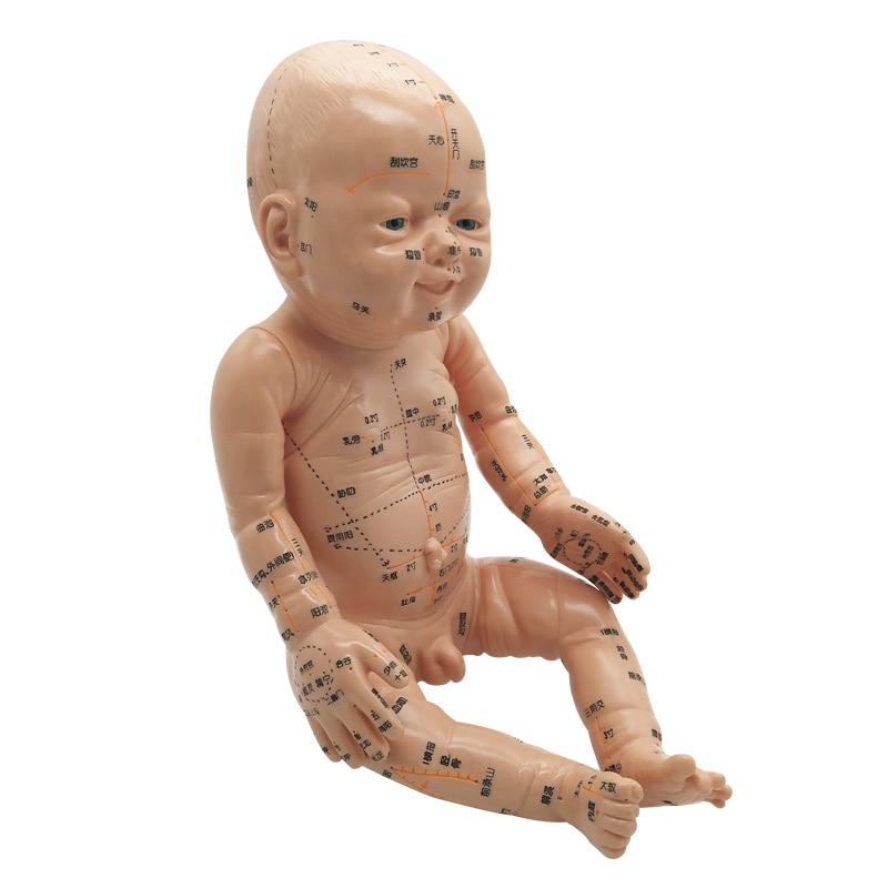 Modelo de masaje infantil con puntos de acupuntura Yuesao entrenamiento medicina china enseñanza envío gratis-in Masaje y relajación from Belleza y salud    1