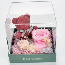Never Fade Preserved fresh Rose Teddy Bear in Acrylic Dome Confess Birthday Girlfriend Gift