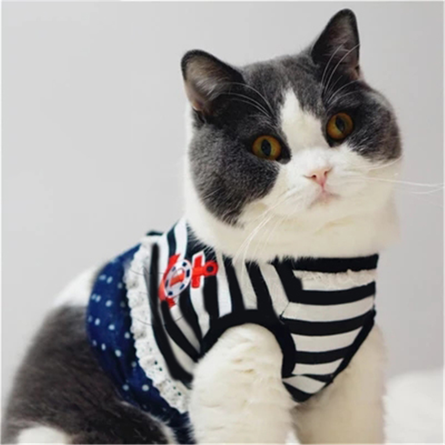Mascotas gato ropa Gatos desgaste traje del svitshot mascotas ...