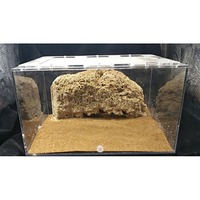 Pet Ant Nest Homeland World Tribe Villa Birthday Gift Teaching Research Science Natural stone cave box terrarium Ecological kit