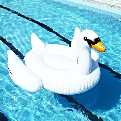 ФОТО 1.5m 60inch Adult Water Fun Inflatable White Black Swan Ride on Pool Toy Swimming Float Air Raft Animal Bed