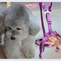 New Dog Toys Pet Puppy Strap Vest Leash Nylon Strong For Cachorro Small Medium Large Big Chiens Leads Comfort Dogs Collars 60248