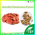 Pure Saúde Natural Antrodia Cinnamomea Extract10: 1 Cápsula 500 mg * 300 pcs