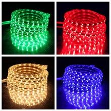 LED Strip 5050 220V Waterproof Flexible light Tape lamp Outdoor String 1M 2M 3M 4M 5M 10M 12M 15M 20M 25M 60LEDs/M