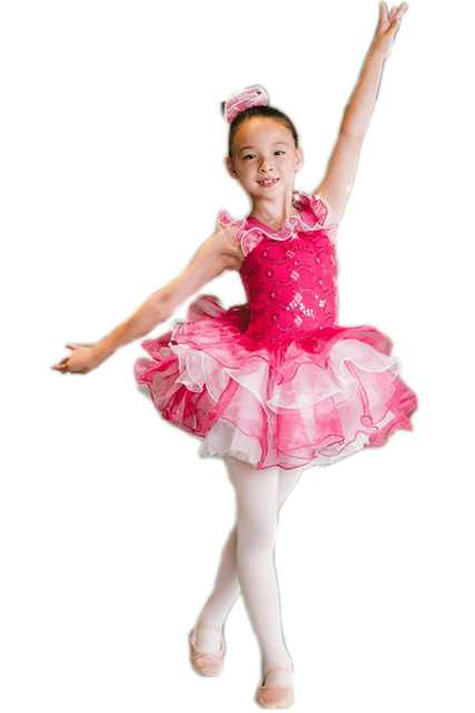 dc6c16a2a1d7 2018 Professional Ballet Tutu Professional Dance Costumes For Girls ...