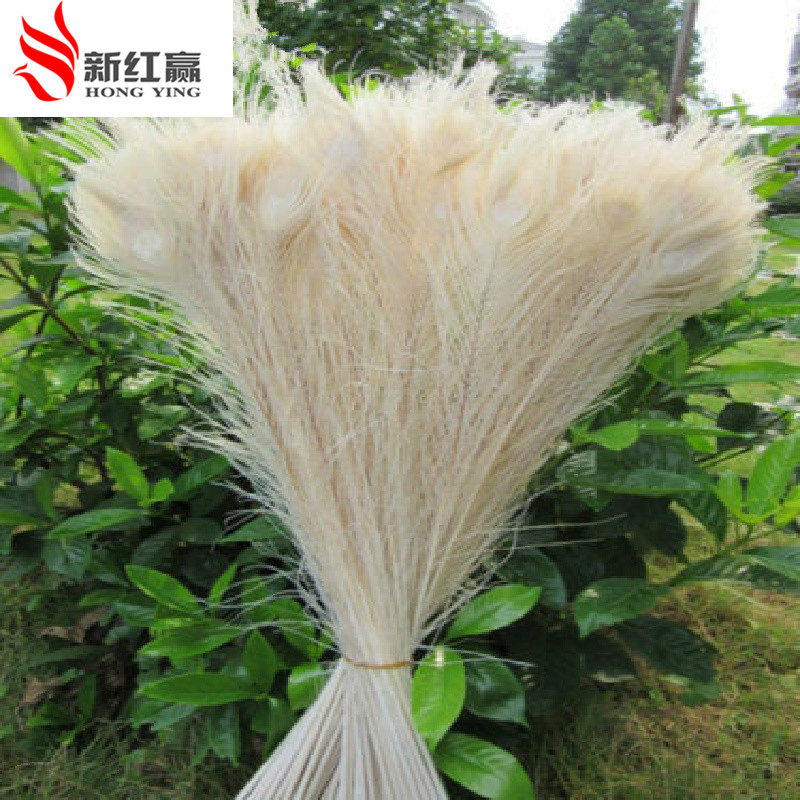 20 Pcs Wholesale Peacock Feathers 55 To 60 Cm / 22-24