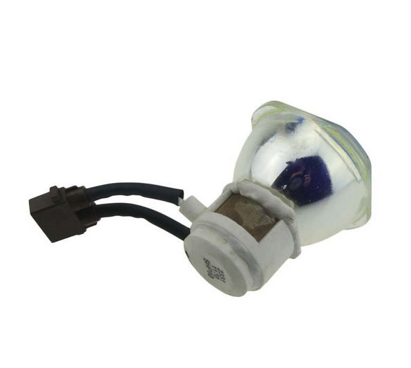 Compatible Bare Bulb TLPLW10 for TOSHIBA TDP-T100 TDP-T100U TDP-T99 TDP-TW100 TDP-TW100U TLP-T100 Projector Lamp without housing compatible bare bulb tlpl78 tlp l78 for toshiba tlp 781e tlp 781j tlp 781u projector lamp bulb without housing free shipping