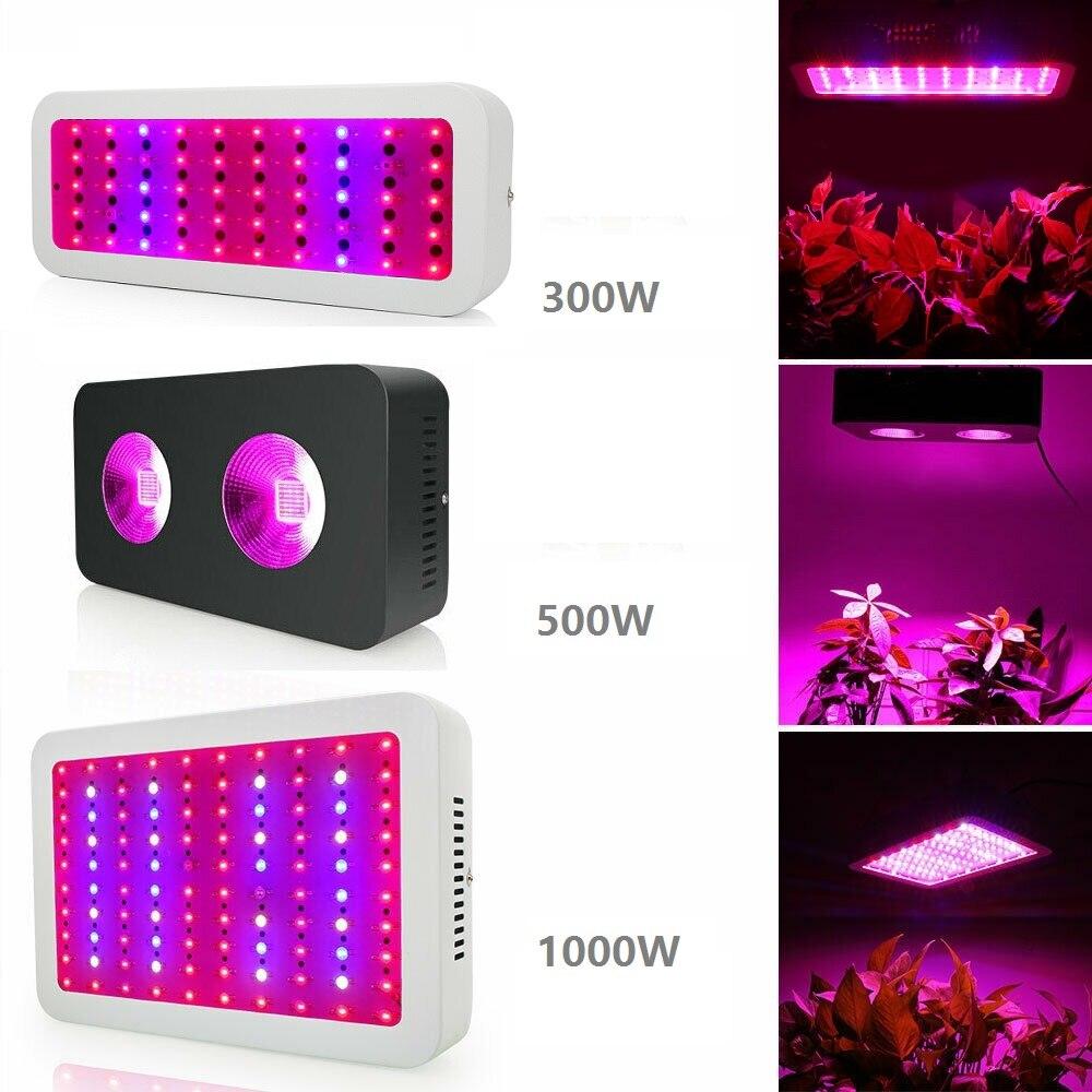 LED de 300W 500W 1000W élèvent la lumière complète d'usine de Fitolamp de spectre pour l'herbe médicale de tente de serre de Vegs de Fruit de culture hydroponique d'intérieur