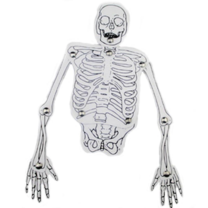 Atemberaubend Markiertes Menschliches Skelett Zeitgenössisch ...