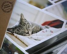 28pcs/pack Cute Novelty Animal Style Cat Creative Gift Random Postcard Birthday Card