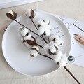 Натуральные сухие стебли хлопка, 21 дюйм, в фермерском стиле, искусственный цветок, наполнитель, Цветочный декор, белые хлопковые стебли, цве...