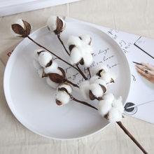 21 polegada Naturalmente Secas Enchimento de Algodão Hastes Estilo Fazenda Flor Artificial Decoração Floral Branco Algodão Hastes Da Flor Do Casamento
