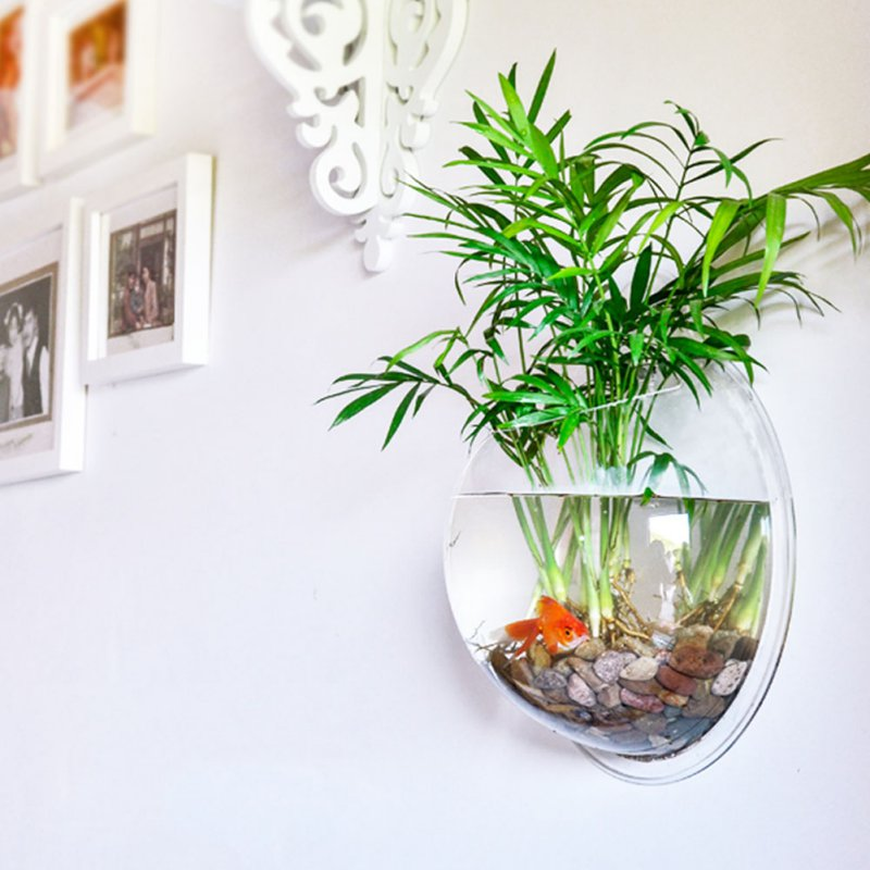 Pet Product Home Decor Transpa Wall Plant Hanging Vase Aquarium Bowl Fish Pot In Aquariums Tanks From Garden On Aliexpress