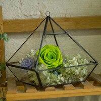NCYP Garden 15cm Hanging Glass Container Geometric Terrarium Succulents Moss Flower Planter Pot Landscape Decoration Terrarium