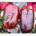 100 семян/пакет Гигант Сладкий Перец Семена, легко Выращивание Перца Чили Семена DIY Главная Сад Овощной Завод