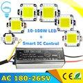 Waterproof LED Driver AC220V 10W 20W 30W 50W 70W And LED Chip Light 10W 20W 30W 50W 70W 100W For DIY LED Flood Light Spotl