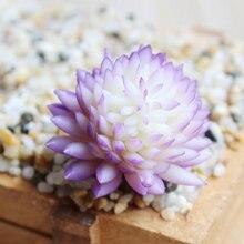 Цельный искусственный пластиковый растение суккулент кактус эчеверия цветок домашний офис Декор подарок искусственные суккуленты украшения