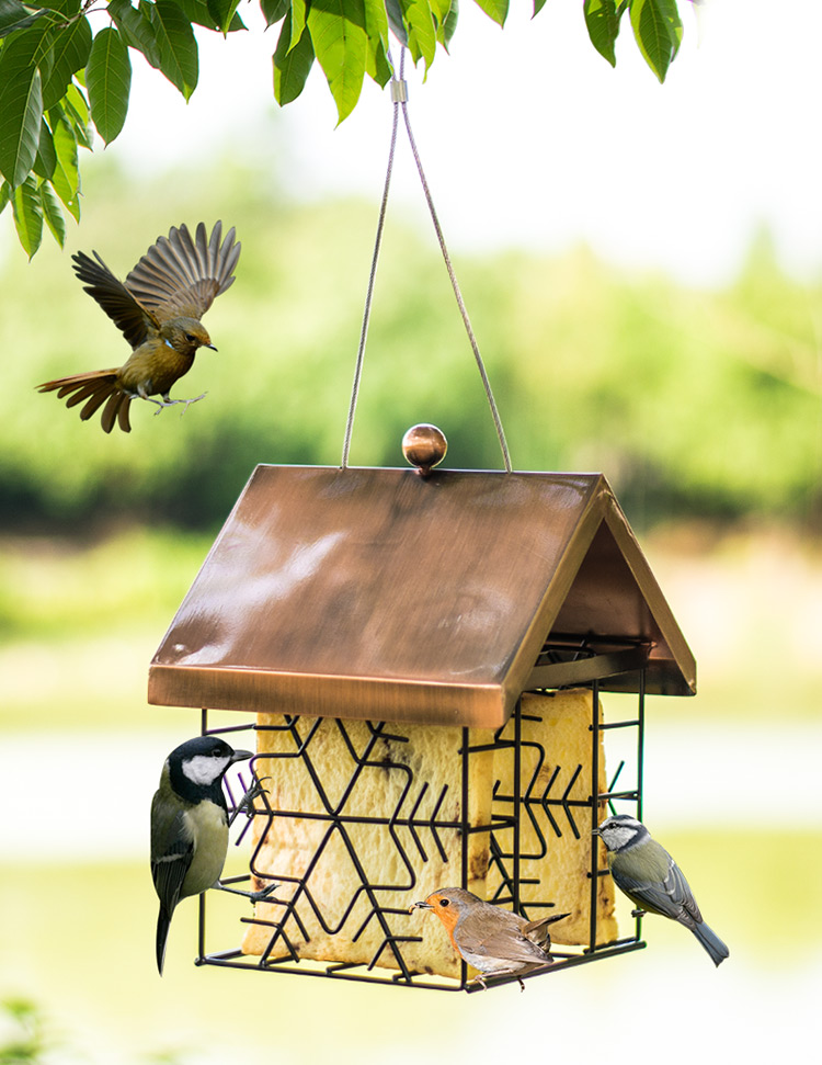 European style wild bird feeder outdoor bird feeders food for Bird food holder