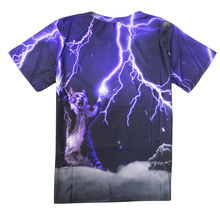2017 casual Lightning kitten hiphop male concert shirt O-neck sweatshirt 3d print women/men cartoon pullover summer Tees T-shirt