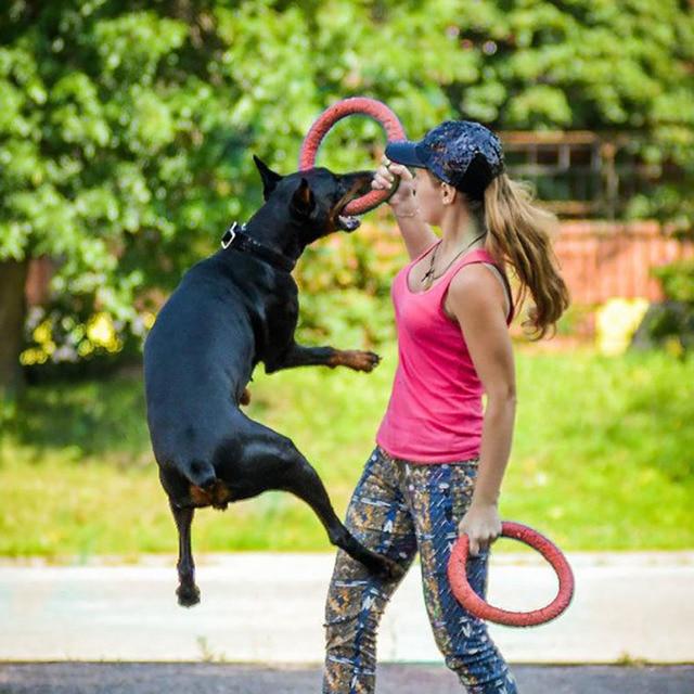Nuevos discos voladores para perros, forma de anillo para mascotas, EVA, masticar, morder los dientes, limpiar, masticar, masticar, juguete para cachorro, entrenamiento divertido suministros