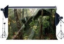 Período Jurássico dinossauro Backdrop Backdrops Árvores Da Selva Floresta Assustador Dinossauro Dos Desenhos Animados do Conto de fadas Fundo Fotografia