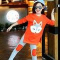 Menina Agasalho conjuntos de Roupas Crianças Primavera Raposa Manga Longa Shirt + Calças Do Esporte Da Forma 7 terno 3 4 5 6 8 9 10 11 12 13 14 anos