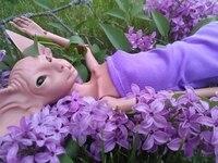 1/4 bjd / sd doll quarterback sphinx cat doll monster plant ear gray spot free eyes