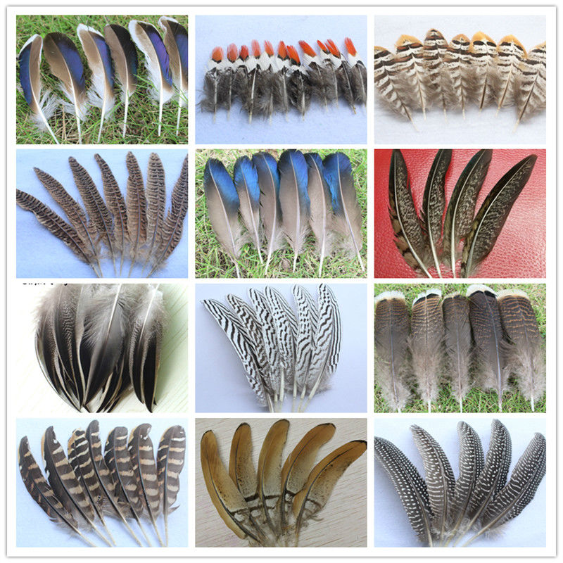 Wholesale 10-100pcs pheasant feathers 5-20cm//2-8inches DIY jewelry decoration