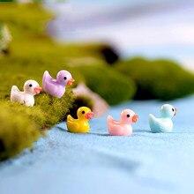 Zocdou 5 peças mini pato colorido pato pato pato pequeno pasto estatueta estátua micro artesanato ornamento miniaturas diy decoração do jardim