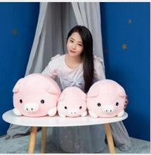 WYZHY New Year Gift of the Pig Mascot Fuqi Plush Toy Pillow Bedside Decoration  30cm