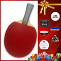 Original 6 stars Table tennis racket Ddouble Pimples-in rubber Ping Pong Racket tenis de mesa table tennis