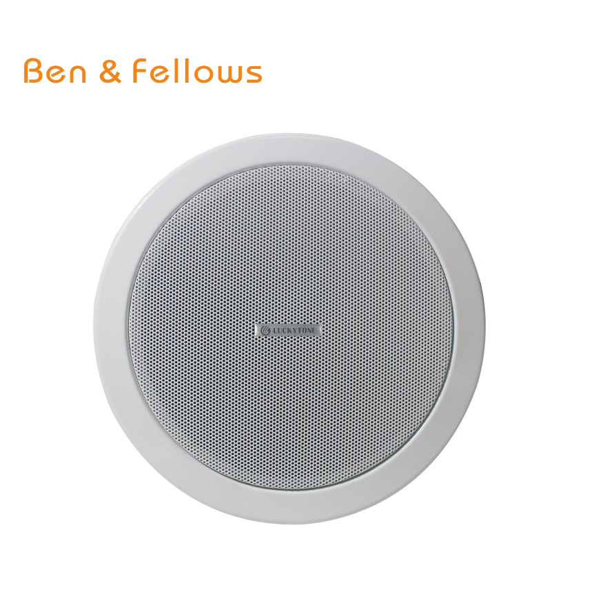 Ben Amp Fellows Ipc 615poe Ip Network Ceiling Speaker 6 Inch