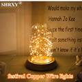 Hot Sale (2 Set) 3M/30 LEDs Copper Wire Lights String Lights for Christmas Light Festival Wedding Party and Home Decoration Lamp