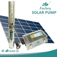 DHL Free Shipping DC Solar Pumps For Agriculture Irrigation 1 3w 5 Cbm H 158m
