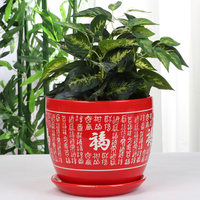 Chinese Style Big Red Bonsan Ceramic Flower Pot Festive Flower Pot Pure Red Personality Creative Basin