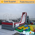 Inflatable Biggors Giant Kids And Adult Beach Water Slide For Sale Shipping by Sea