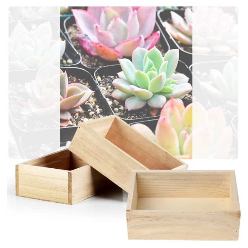 Plantas Suculentas Em Vasos de Flores de madeira Titular Caso Caixa De Armazenamento do Desktop Organizer