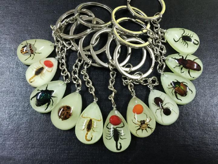 FREE SHIPPING Chinese 30 Real Beetle Bug Scorpion mix Insect Glow Drop Shape Keychain