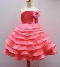 Retail 2014 Girls Flower Lace Party Princess Dresses 3-7T 1628