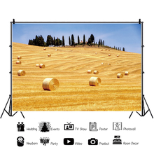 Yeele Countryside Farm Hay Bale Rural Grassland Field Scenery Photography Backgrounds Photographic Backdrops For Photo Studio rural non and off farm activities in dessie zuria district