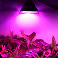 New Arrival 24W 36W 52W 58W SMD E27 LED Horticulture Grow Light for Garden Flowering Plant and Hydroponics System Free Shipping