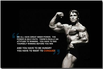 Arnold Schwarzenegger Conquer HD Art Silk poster 12x18 24x36