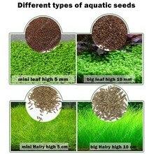 Красивые семена травы для аквариума водный для воды зеленые растения Украшение аквариума легкая Посадка Семена домашние декоративные растения поставки