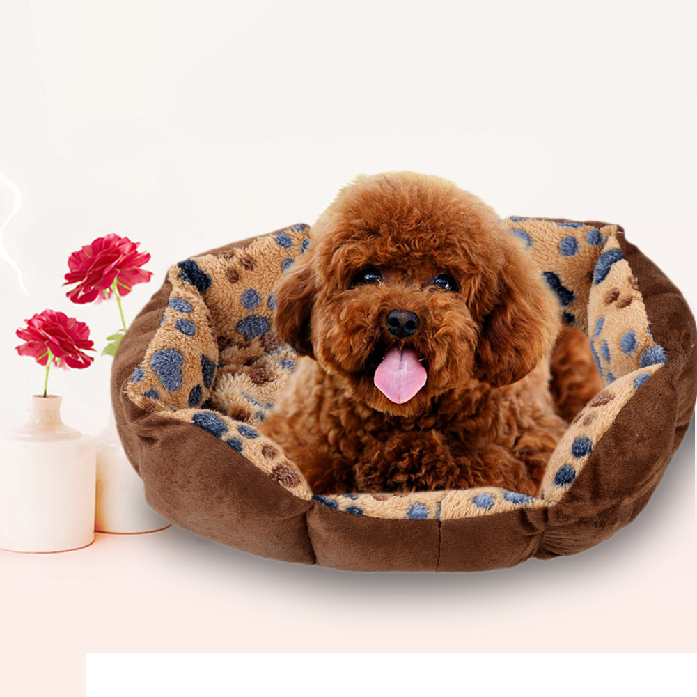 Dog Beds For Small Dogs Fancy