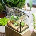 Haus Form Glas Geometrische Terrarium Indoor Outdoor Tabletop Sukkulente Farn Pflanzer Display Blumentopf Bonsai Blumentopf