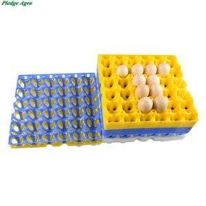 Image 2 - 10 шт куриное яйцо поднос 30 яиц емкость пластиковая транспортировка хранение коммерческий яйца сельскохозяйственное оборудование инструменты