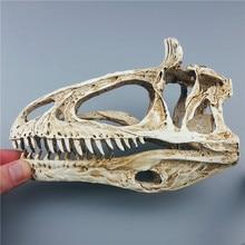2018 New Arrival New Mrzoot Resin Dinosaur Skeleton Model Cryolophosaurus Specimen Animal Research Teaching Bar Decorations