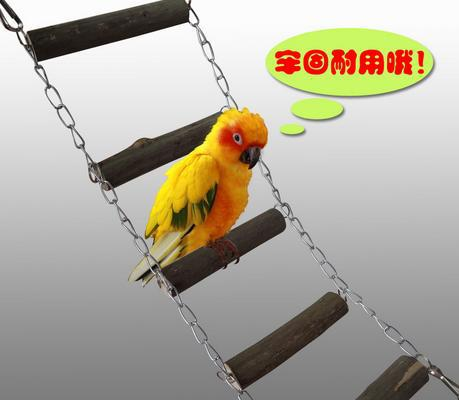 Cage Chain Ladder Stairs Rope Bird S Nest Toy Standing Poles Mannikin Peony Parrot