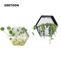 Brief Modern Hexagon Wall Vase Wall Hanging Small Fish Tank Desktop Succulent Hydroponic Planter Flower Pot Flowerpot Home Decor